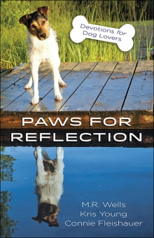 Paws for Reflection