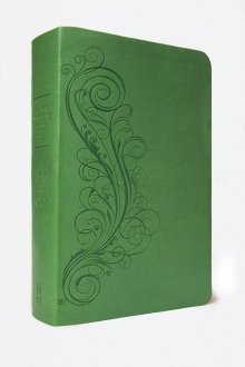 The New Inductive Study Bible Milano Softone™ (ESV, green)