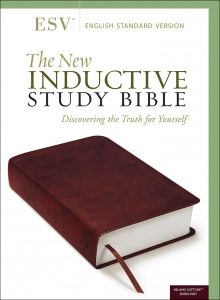 The New Inductive Study Bible Milano Softone™ (ESV, burgundy)